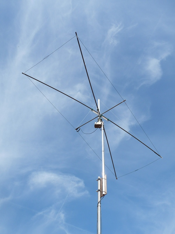 The 10m wire Moxon